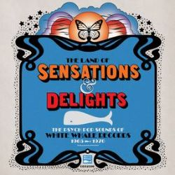 Various Artists (White Whale) - Land of Sensations & Delights: Psych Pop (2LP) - Set of hits & rarities from the White Whale label, includes: Jim Ford, JK & Co, The Clique, Nino Tempo & April Stevens, Lyme & Cybelle and more