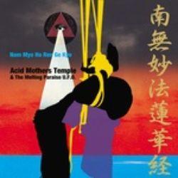 Acid Mothers Temple - Nam Myo Ho Ren Ge Kyo (2LP) - First time on vinyl. Heavy pink 180 gram wax.