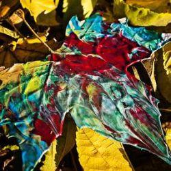 Chon - Grow (LP) - Full Length Album, first time on vinyl since 2017