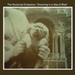 Nocturnal Emissions - Drowning in a Sea of Bliss (LP) - Found sounds, cut-ups & rhythmic, hypnotic beats, ala Nurse With Wound, Cabaret Voltaire, & early Throbbing Gristle.  Grey vinyl.