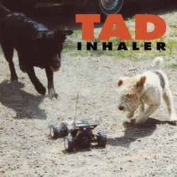 """TAD - Inhaler (LP) - This 1993 record marked Tad's major label debut (on the Giant imprint), and for it the band brought in J Mascis to produce. The band toured with Soundgarden behind this record; though that didn't lead to the hoped-for commercial breakthrough, it did cement Inhaler's status as the go-to record in Tad's catalog. Only out on LP for a heartbeat upon its initial release, and never reissued since, Inhaler comes in tan, black and red """"Mutt Mix"""" swirl vinyl limited to 3000 copies for RSD. (RSD2156)"""